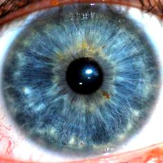 Iridology Reading | My cousins girl friend is just finishing up a course in this. She said ...