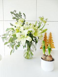 """Auf der """"mammilade""""_n-Seite des Lebens: Grünes Glück zu Weihnachten, Eukalyptus, Lilien, Hyazinthen"""