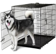 Dog Crates for Extra Large Dogs - XXL Dog Crate Pet Cage Double-Door Best for Big Pets - Wire Metal Kennel Cages with Divider Panel & Tray - in-Door Foldable & Portable for Animal Out-Door Travel Cheap Dog Kennels, Dog Kennels For Sale, Pet Kennels, Extra Large Dog Crate, Large Dogs, Small Dogs, Small Animals, Dog Cages, Pet Cage