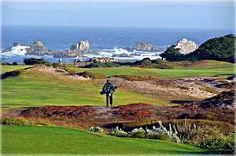 Pacific Grove Municipal Golf Course is the top rated municipal golf in the state with over 70,000 rounds played annually. For information about the golf links visit: www.PGGolfLinks.com. For information about Pacific Grove and its offerings visit: www.pacificgrove.org