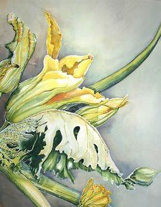 Almost squashtime by DesertCanyon on Etsy Watercolour and gouache