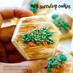 Mini Hexagon Succulent Sugar Cookies 1 Dozen perfect by LHEBakes