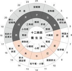 黃帝內經十二時辰養生 Health And Wellness, Health Care, Health Fitness, Exercise Tubing, Chinese Herbs, Traditional Chinese Medicine, Medical Information, Body Systems, Acupressure