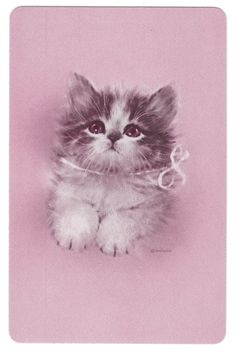 Playing Cards Swap Cards Vintage Giordano Kitten CAT Gorgeous 1970'S | eBay