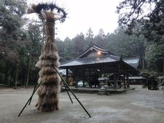 The festival of the area in which I live.   A torch is made from the reed mown in winter.