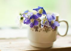 Photo Notecard  Violets in a Cup by BobbisMixedMediaArt on Etsy, $4.00