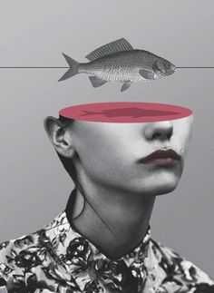 matthieu-bourel-mixed-media-collages This looks like it could also be a mood portrait. It is slick and surreal. I like the shadow that the fish has over the sliced head.