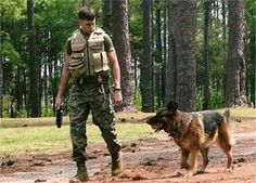 TRIBUTE TO FALLEN MILITARY WORKING DOG HANDLERS & DOGS IN THE WAR ON TERROR (Print for Wounded Warriors Run)