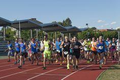 2. IT Experts Run Steyr: Rund 140 Läuferinnen und Läufer zeigten ihr sportliches Talent Steyr, Basketball Court, Sports, Battle, Sporty, Round Round, Hs Sports, Sport