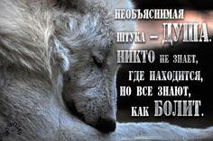 Необъяснимая штука — душа. Никто не знает, где находится, но все знают, как болит.  © А. П. Чехов