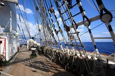 Four masted barque Sedov, Funchal 500 Race 2008, Madeira Coast near Funchal, Atlantic Ocean