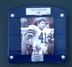CUSTOM Texas Stadium Seat Bottoms   Charlie by DRAWNBYDESIGN, $49.95
