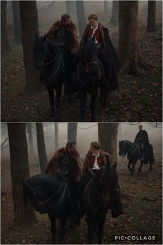 Deborah Harkness, A Discovery Of Witches, All Souls, Teresa Palmer, Season 2, Enchanted, Movie Tv, Horses, Night