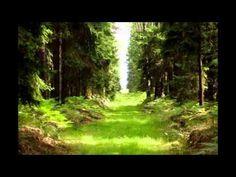 Kryštof,Tomáš Klus - Cesta Karel Gott, My Music, Music Videos, Youtube, Plants, Hampers, Music, Planters, Youtubers