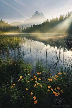 Lothlórien. Or the Dolomites.  Photo by Stefan Hefele