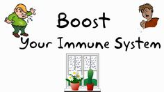 12 Ways to Support Your Immune System Naturally