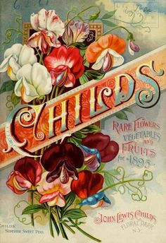 Childs Rare Flowers, Superior Sweet Peas 1895
