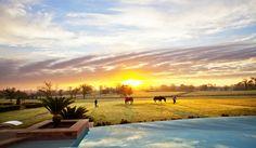 Texas Luxury Resort & Ranch | The Inn at Dos Brisas | Washington, TX