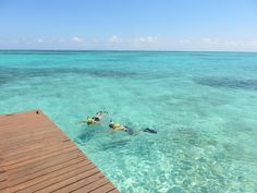 Snorkeling off the dock at Grand Caribe, Ambergris Caye, Belize