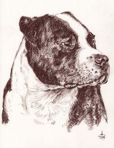 Portraits - Pets - Pencil/Pastel/Pen - A3 #Portrait #icons #BillTaylorBeales #Pets #pastel #HandDrawnPortrait #ink #CommissionedArt #Art #PencilPortrait