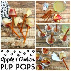 Apple & Chicken Pup Pops | Homemade Dog Food