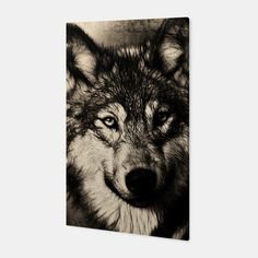 Gray Wolf Canvas