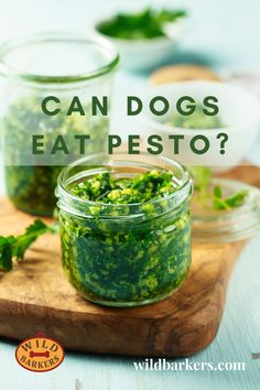 Can dogs eat pesto? No, although pesto is primarily made up of basil, which is safe for dogs, it contains garlic, which is known to be toxic, as well as oil and cheese which can cause health issues, such as, diarrhea, vomiting, and obesity. What should I do if my dog ate pesto? 1. First, check the ingredients list. Garlic is the ingredient to look out for.  2. Determine how much was eaten and the quantity of garlic ingested. 3. Contact your veterinarian; they will be able to advise if the amount Can Dogs Eat, Dog Eating, Pesto, Basil, Cucumber, Garlic, Cheese, Canning, Health