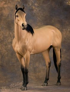 "This is an equine sculpture by artist Mel Miller. It is ""Denny"",a portrait of the horse from ""The Man From Snowy River""."