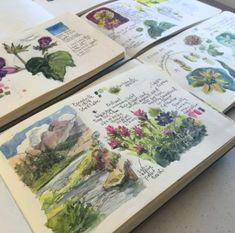 from Kristin Meuser sketchbooks: nature journalling drawing acuarela Art Inspo, Kunst Inspo, Travel Sketchbook, Arte Sketchbook, Kunstjournal Inspiration, Sketchbook Inspiration, Sketchbook Ideas, Art Journal Pages, Art Journals