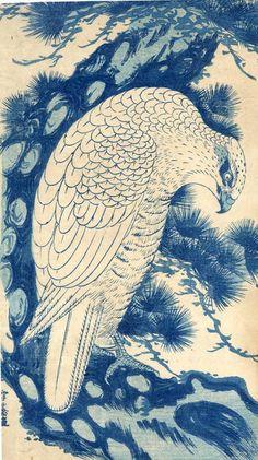 White Falcon in a pine tree, woodblock print by Sawa Sekkyô,