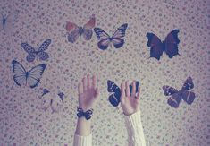 beautiful, butterfly, girl, hands, hipster, photography