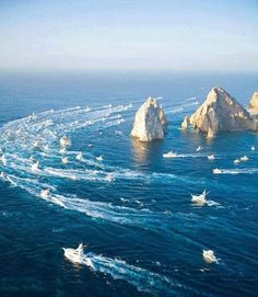 Sea of Cortez, Cabo San Lucas bcs Sport Fishing Boats, Fishing Trips, Panama Cruise, Places To Travel, Places To Visit, Gulf Of California, Undersea World, Sailing Adventures, Cabo San Lucas