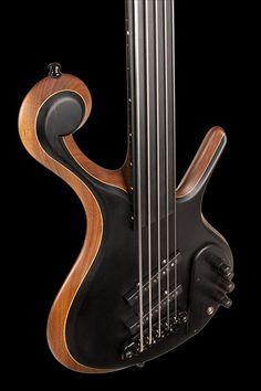Xylem Bass, this fretless model allows full creativity of slides, bends, slide harmonics,etc... Defenitely on the shopping list