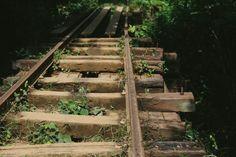 The Bamboo Train // Battambang Cambodia Battambang Cambodia, Countryside, Bamboo, Train, Strollers
