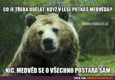 Co je třeba udělat, když v lese potkáš medvěda? Funny Memes, Jokes, Positive And Negative, Animal Totems, Inner Strength, Peace Of Mind, The Fosters, Inspirational Quotes, Positivity