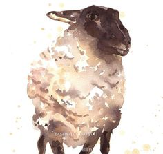 Love this little sheep.