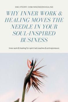 If you are a conscious leader or coach, or if you're a spiritual entrepreneur, learn more about how doing inner work is really at the heart of building a business and a life that you love. Purpose Driven Life, Level Of Awareness, Levels Of Consciousness, Leadership Coaching, Free Training, Coaches, Personal Development, Mindset, Entrepreneur