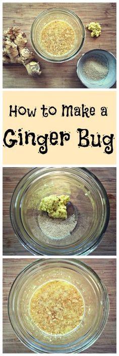 How to Make a Ginger Bug~ A traditionally fermented starter for homemade natural sodas! http://www.growforagecookferment.com