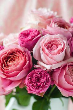 La vie en rose #PiagetRoseDay @Piaget Huewe Huewe Huewe