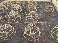 Use twigs from the garden to build supports