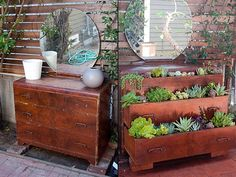 Old dresser repurposed into a mini garden  Furniture adds glamour to your house but once it gets old it loses it worth. Although any kind of furniture can be reused by transforming it into some innovative design but generally it is replaced. Now for example look at this old dresser, which had been a piece of importance in bedroom but as time moved on it lost its worth.