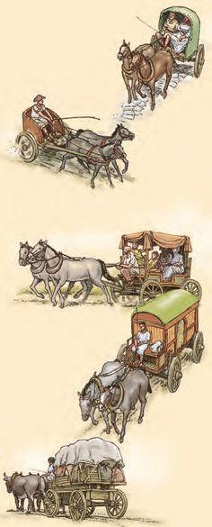 Carrus ~ wagons
