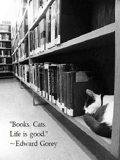 """Books. cats. Life is good."" - Edward Gorey"