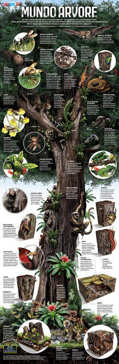Mundo Árvore – por Luiz Iria