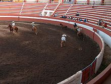 Charreada - National sport in Mexico (a special form of rodeo)