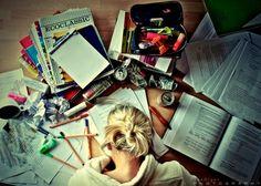 studeren...