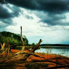 Marions Ferry Lake Sam Rayburn, Texas
