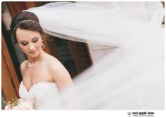 red apple tree photography: A beautiful downtown wedding at Sullivans in Anderson SC with Liza + Josh