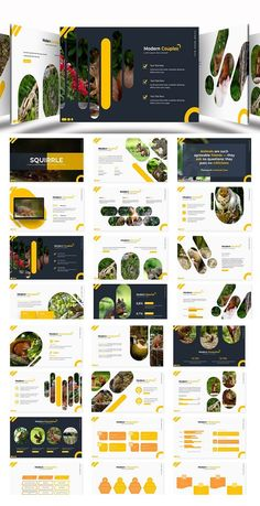 Squirrle - Powerpoint Template- Premade color variation color ) Get it now!, an great Powerpoint template for multipurpose presentation business or personal Hotel Website Templates, Template Web, Page Web, Graphic Design Brochure, Booklet Design, Page Design, Web Design, Drupal, Website Design Inspiration