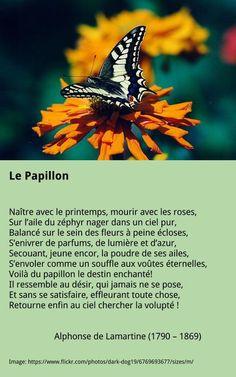 Lamartine - Le Papillon